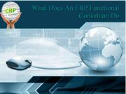 What Does An ERP Functional Consultant Do