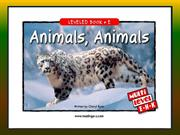 Reading story Animals Animals