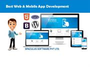 Web & Mobile app development company