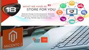 Magento website development company in india