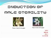 INDUCTION OF MALE STERILITY - Copy