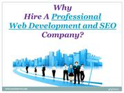 Why Hire a Professional Web Development and SEO Company?