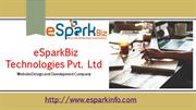 Website Design and Development Company in New York, USA | eSparkBiz