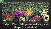 Decorate your property with Vertical Garden