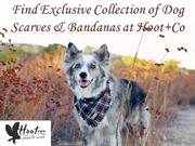 Find Exclusive Collection of Dog Scarves & Bandanas at Hoot+Co
