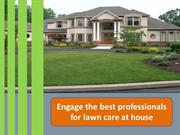 Engage the best professionals for lawn care at house