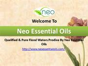 Qualified & Pure Floral Waters Prodive By Neo Essential Oils