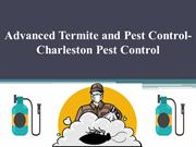 Advanced Termite and Pest Control- Charleston Pest Control