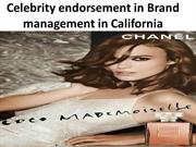 Celebrity endorsement in Brand management