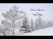 1-Mar 01-Winter Splendor-Nocturn-Chopin-Joshua Bell violin