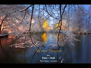 1-Mar 13-Winter Scenes-Winter-Vivaldi-Viktor Barinov accordeon