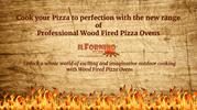 Professional Wood Fired Pizza Oven