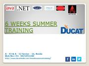 It industrial Project based summer training at ducat