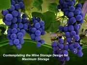Contemplating the Wine Storage Design for Maximum Storage