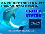 Why Pool looking more cloudy  than Fresh? And how we manage it?