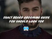 Perfect Beard Grooming Guide You Should Look For