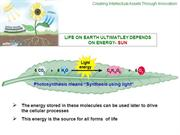 Photosynthesis the basics of the mechanism_Prakash V