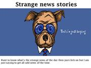 Strange news stories - butiamjustsaying.com