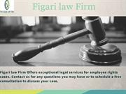Best Legal Solutions   Figari law Firm