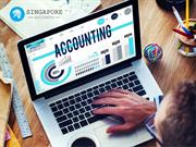 Professional Accounting Services Singapore for Small Businesses
