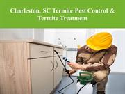 Charleston, SC Termite Pest Control & Termite Treatment