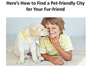Here's How to Find a Pet-friendly City for