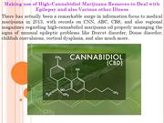Making use of High-Cannabidiol Marijuana Removes to Deal with Epilepsy