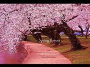 1-Mar 25-Spring flavors-I will always love you-Francis Goya guitar