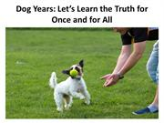 Dog Years Lets Learn the Truth for Once and for All