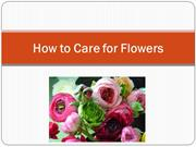 How to Care for Flowers – Speaking Roses