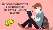 Hadoop Components and Architecture Big Data and Hadoop Training