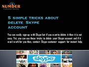 5  simple  tricks  about  delete   Skype  account