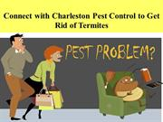 Connect with Charleston Pest Control to Get Rid of Termites