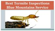 Best Termite Inspections Blue Mountains Service