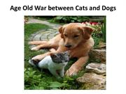 Age Old War between Cats and Dogs