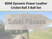 BDM Dynamic Power Leather Cricket Ball 3 Ball Set - Sabkifitness.com