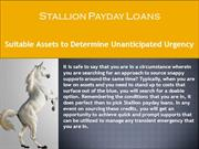 Stallion Payday Loans Popular Compared to other Loans