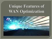 Unique Features of WAN Optimization