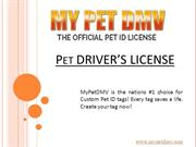 Keep Your Pet Safe With Pet Drivers License - My Pet Dmv