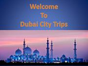 Get Abu Dhabi City Tour Packages at Reasonable Prices From Dubai