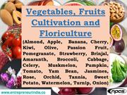 Vegetables, Fruits Cultivation and Floriculture