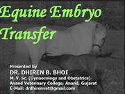Equine Embryo Transfer,By:Dr.Dhiren Bhoi