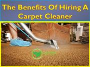 Best Advantages Of Hiring a Carpet Cleaner Sydney - Greystanes