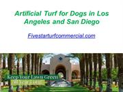 Artificial Turf for Dogs in Los Angeles and San Diego