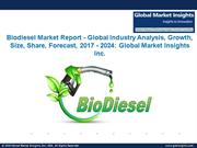 Biodiesel Market Analysis and Industry Forecast, 2017 – 2024