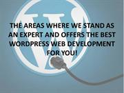 BEST WORDPRESS WEB DEVELOPMENT