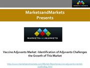 Vaccine Adjuvants Market -Identification of Adjuvants Challenges the G