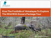 Kiss The Foothills of Himalayas To Explore the Wild With Dooars Packag