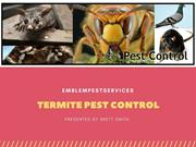 Termite Control Penrith- Effective Measures for Termite Control