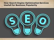 How Search Engine Optimization Services Usefull for Business Popularit
